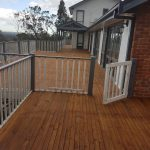 A1 Alpha Painting Services in Melbourne (35)