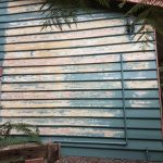 A1 Alpha Painting Services in Melbourne (52)